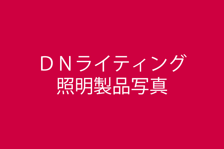 DNライティング(4)