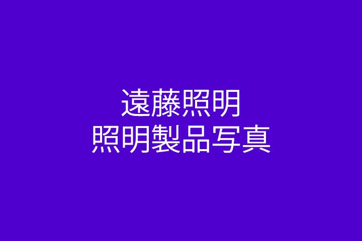 遠藤照明 商品(1)